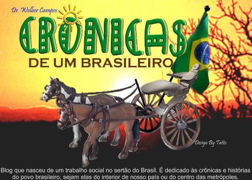 Cronicas de um Brasileiro