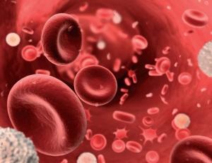 hemacias-plaquetas